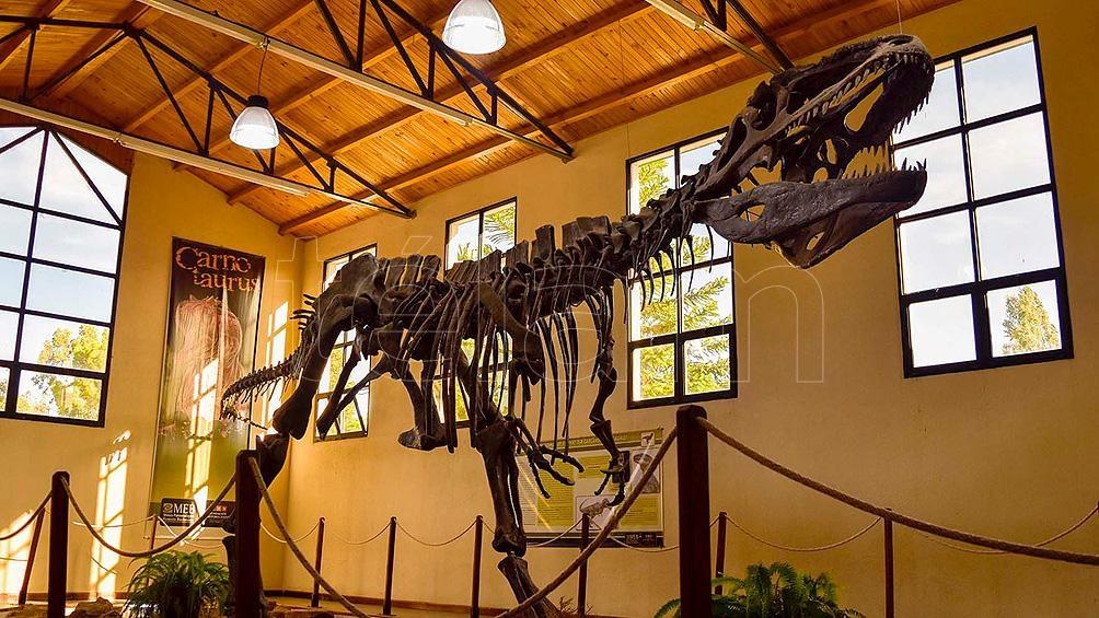 En  la Villa en 1993 se encontró el Giganotosaurus carolinii, el dinosaurio carnívoro más grande del mundo.