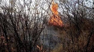 Jujuy y Entre Ríos tienen focos activos de incendios forestales