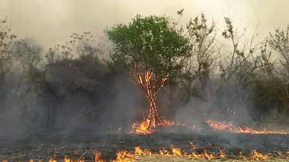 En Jujuy sigue el fuego en ila zona del Parque Nacional Calilegua.