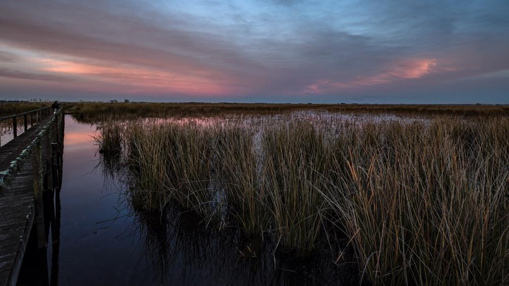 Parque Nacional Ciervo de los Pantanos