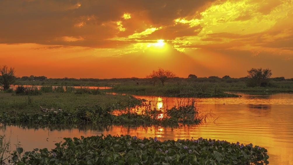 Las ochos islas del parque se originaron por la sedimentación del río Paraná; están en constante transformación.