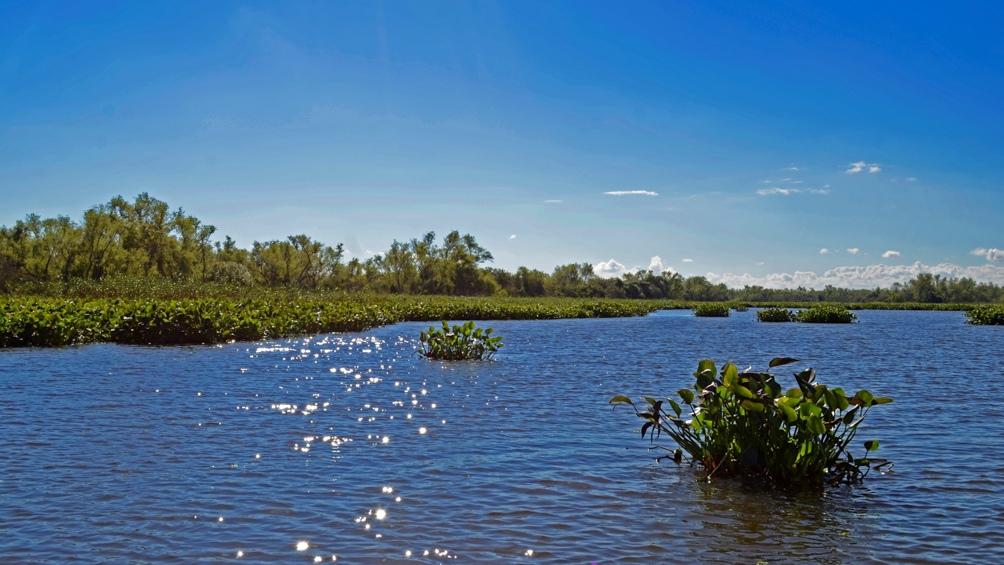 Parque nacional Pre Delta (Entre Ríos)