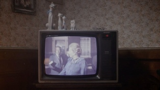 Cuatro filmes argentinos en competencia y homenaje a Solanas entre los anuncios de Mar del Plata