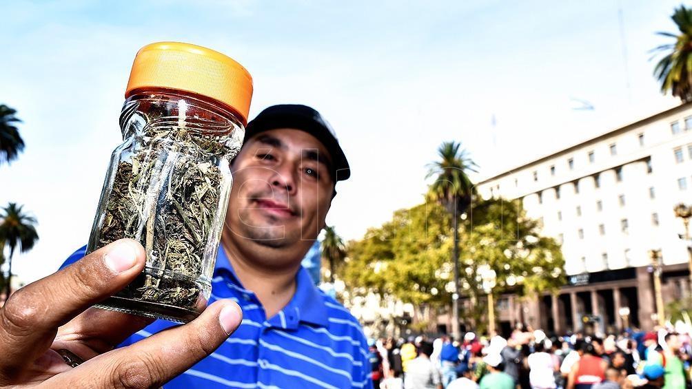 El Estado podrá proveer en forma gratuita derivados de la planta de cannabis a quienes tengan indicación médica.