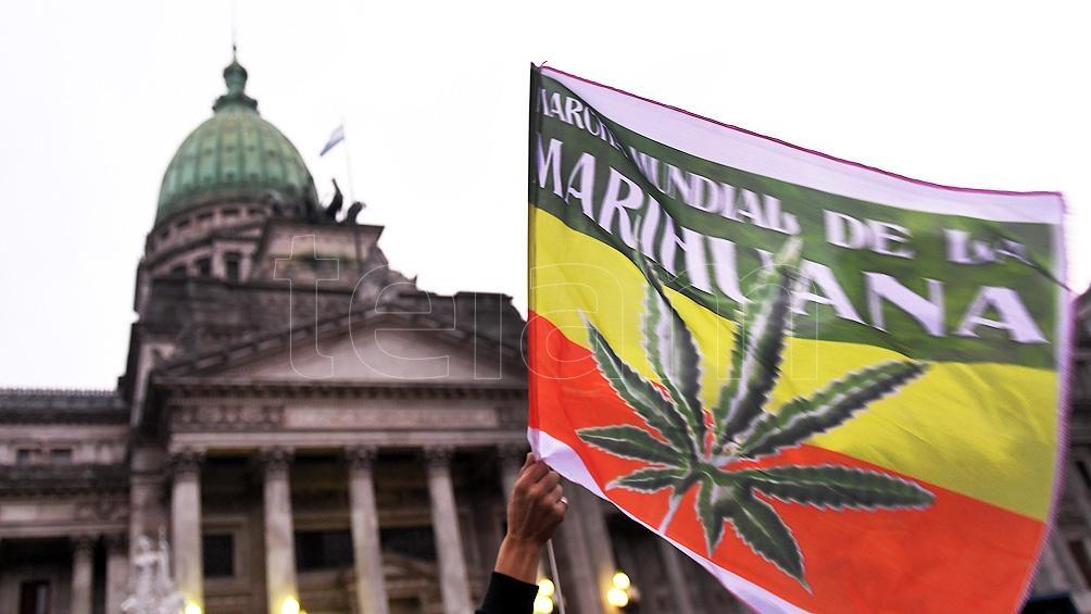 Se reconoce el derecho de los pacientes a no ser criminalizados por el uso del cannabis medicinal.
