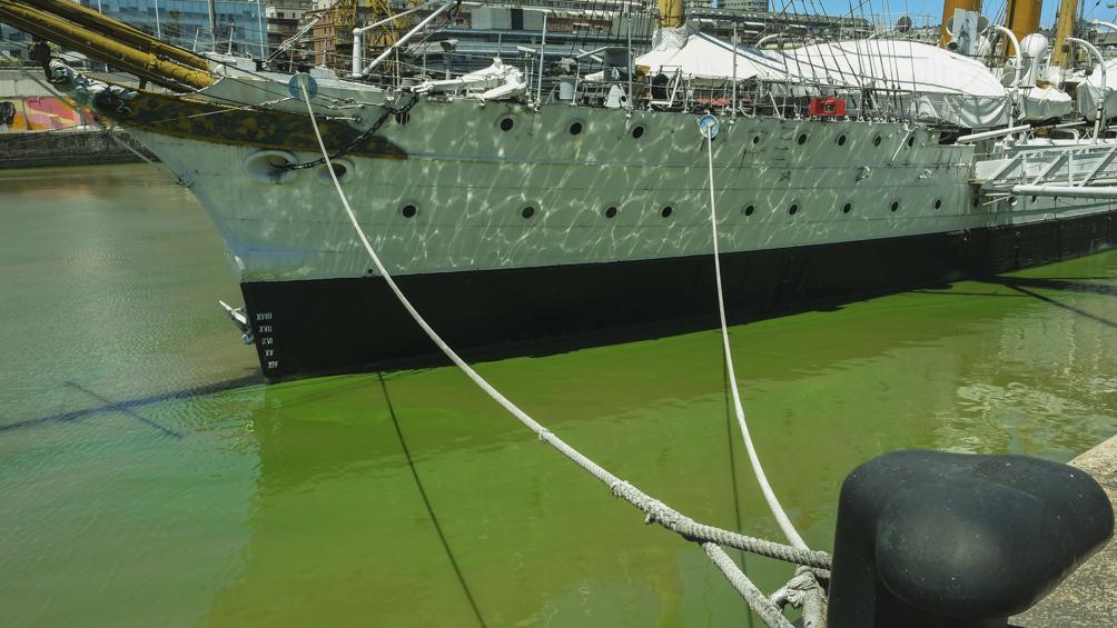 """Ambiente analiza toxicidad del agua en Tigre por niveles """"preocupantes"""" de cianobacterias"""