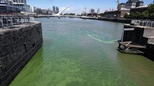 """Descartan que las """"aguas verdes"""" sean tóxicas"""