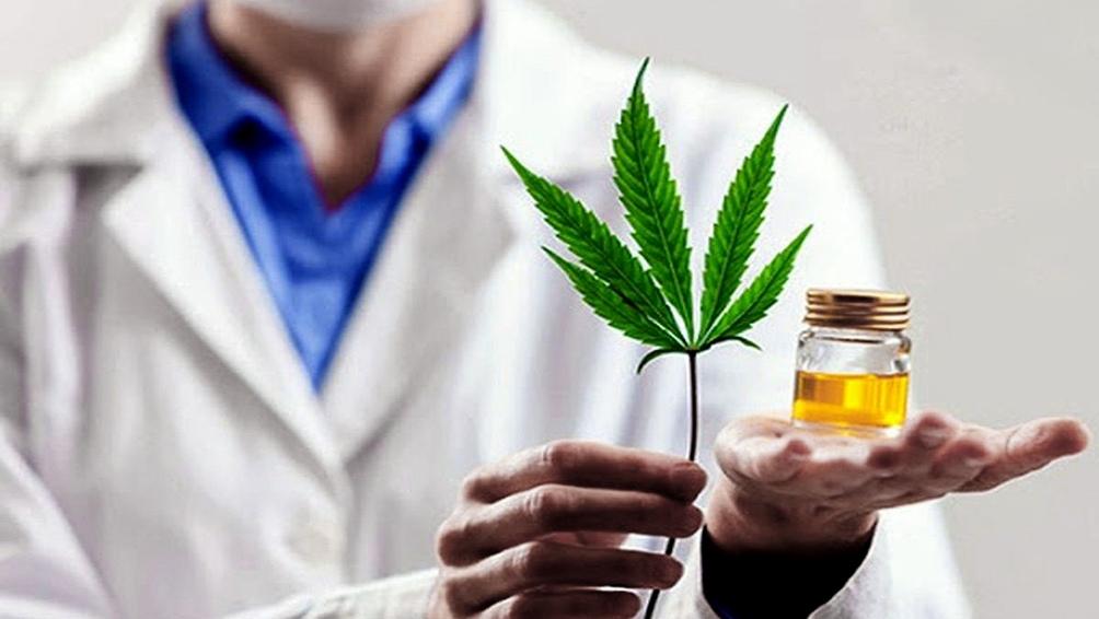 El Gobierno presentó un proyecto para producción y comercialización de cannabis medicinal