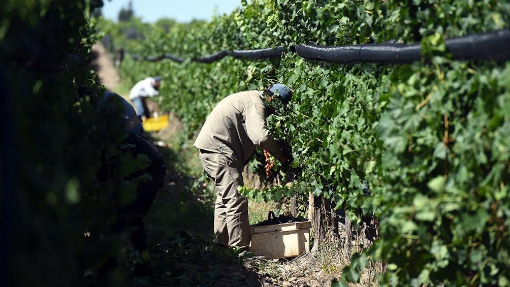 El trabajo decente es un concepto desarrollado por la OIT para establecer las características que debe reunir una relación laboral acorde con los estándares internacionales.