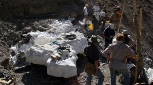 Descubrieron una especie de dinosaurio que ayuda a comprender el período volcánico