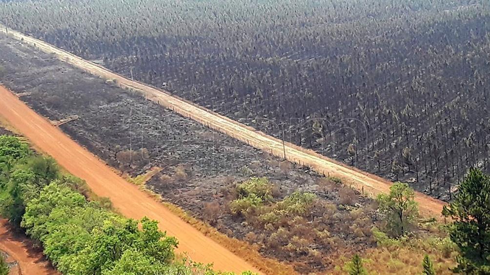 La superficie estimada afectada por incendios reportados desde el 01/01/2020 suman unas 1.080.846 hectáreas.