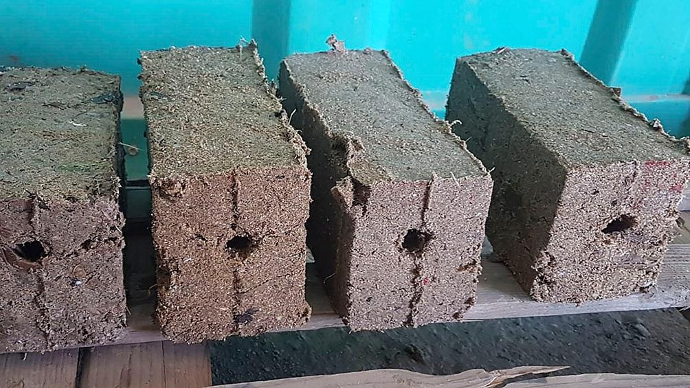 La producción de ecoleños, la leña ecológica realizada con residuos de origen vegetal como cartón, papel, hojas, aserrín y viruta, fue premiada en un concurso nacional.