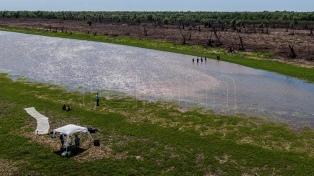 Buscan proteger la isla del Paraná que nació tras el choque de dos barcos
