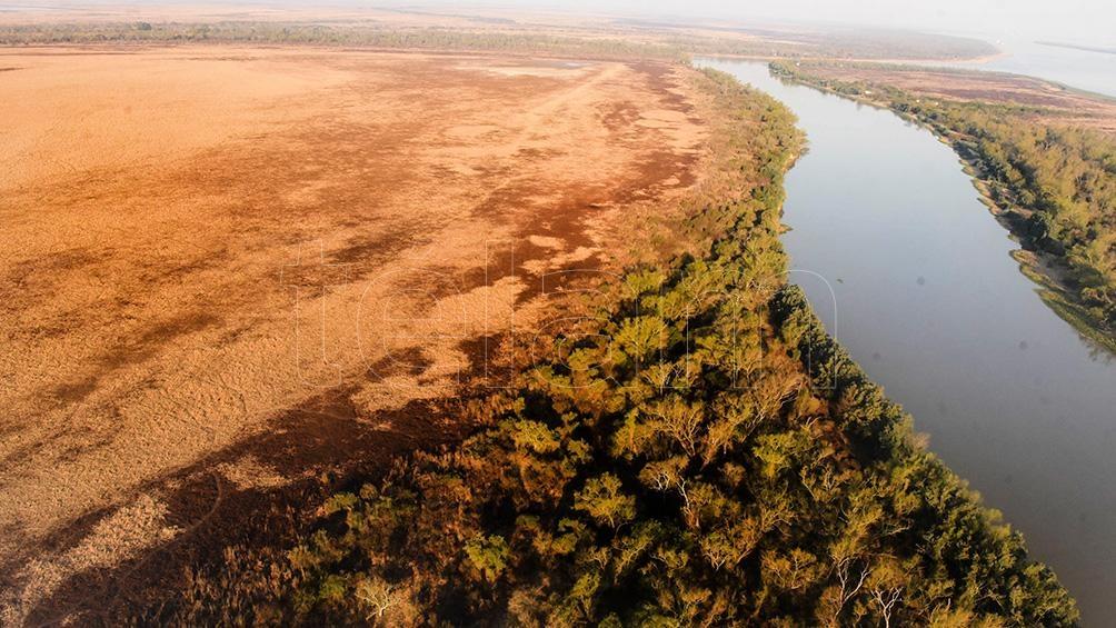 Al cabo de 77 años alcanzó una superficie de más de 900 hectáreas.