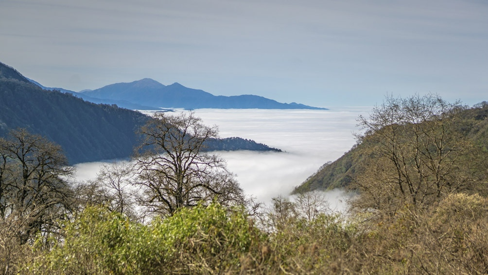 Exponente de la ecorregiones de la Yunga y Altoandina, Aconquija tiene las nacientes de los ríos Jaya y las Pavas que riegan los valles tucumanos.