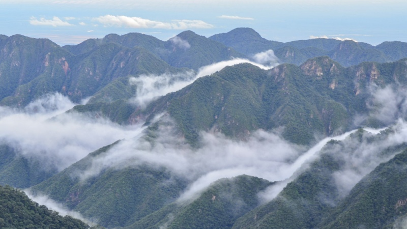Jujuy: Laguna de los Pozuelos y Calilegua