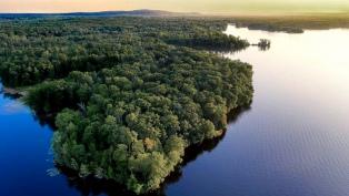 El Amazonas perdió el 8% de su territorio en 18 años por la deforestación