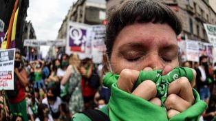 Políticos y organizaciones internacionales celebraron la media sanción