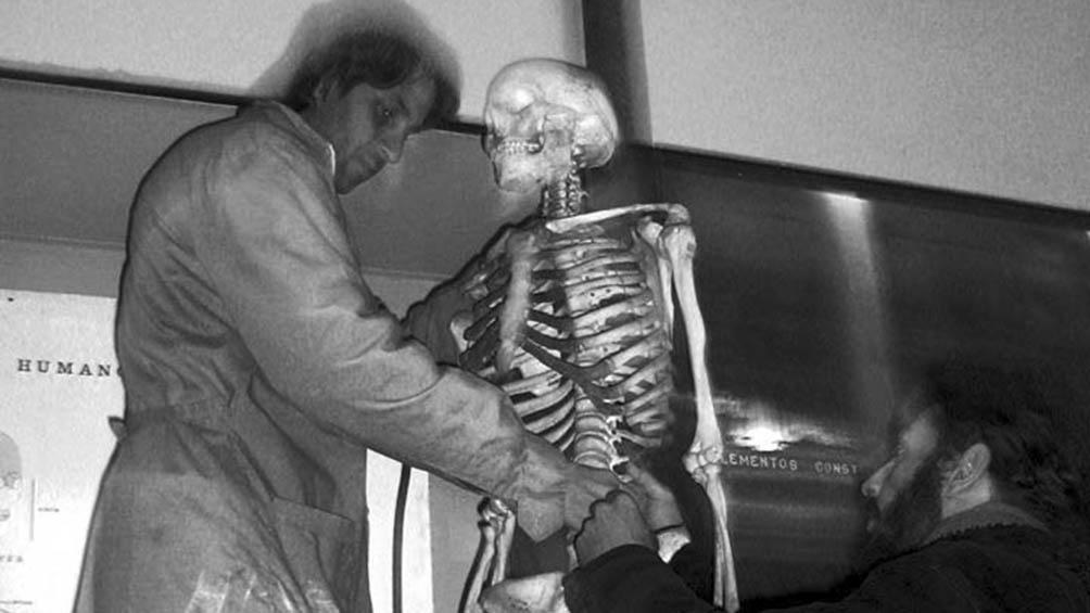 Tras morir cautivo a los 22 años, de una enfermedad curable para la época, dentro del museo platense, el cuerpo de Maish Kensís fue descarnado y su esqueleto exhibido en las vitrinas.