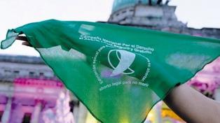 El Congreso Nacional termina el año con el histórico debate sobre la legalización del aborto