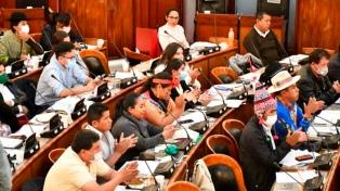 Una senadora opositora dejó la jefatura de su bancada por coincidencias con el MAS