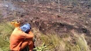 Hay focos de incendios en La Pampa y Entre Ríos