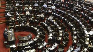 La sesión especial de Diputados abordó la situación sanitaria de Formosa
