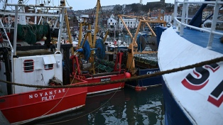 Anchoas, caballa y atún, últimos escollos para un acuerdo comercial entre Londres y la UE