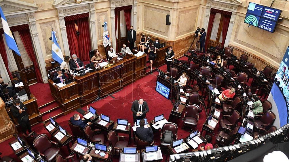 El Senado durante la sesión en la que se aprobó la ley de interrupción voluntaria del embarazo.