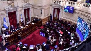 Los puntos salientes del proyecto sancionado por el Senado que legaliza el aborto