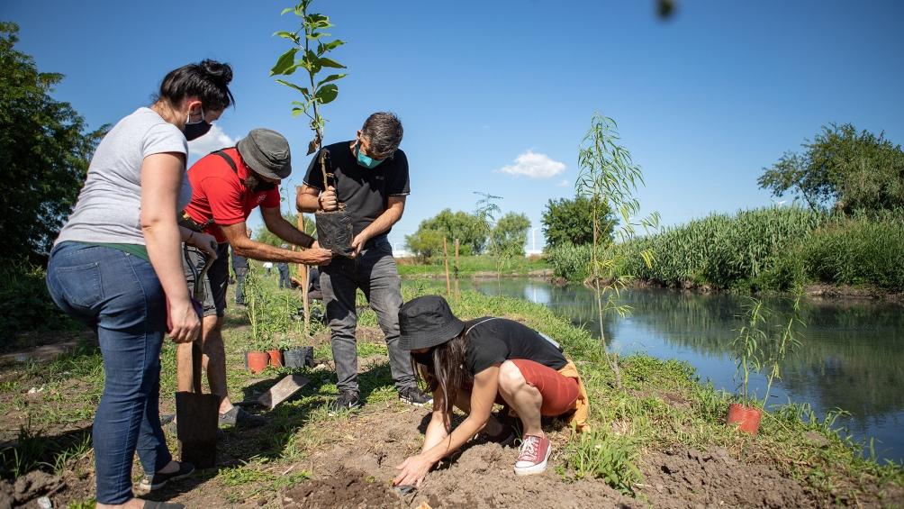 Junto a vecinos Acumar plantó especies nativas para embellecer el paisaje.