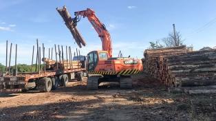 Entre Ríos exportó 1,2 millón de toneladas de madera por $ 3.000 millones en dos años