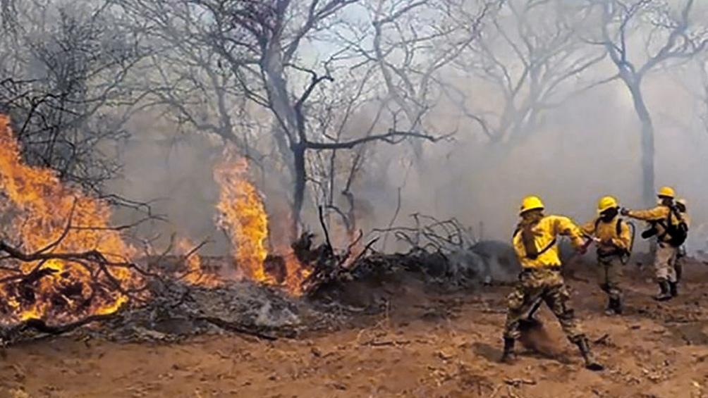 AFIP instrumenta medidas de alivio para zonas afectadas por incendios forestales