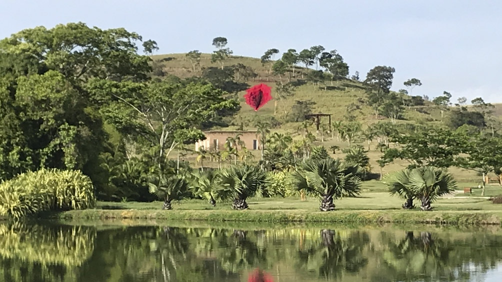 Diva, instalada en Pernambuco