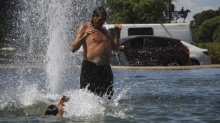 En otra mañana agobiante, unos pocos porteños buscaron refugio fresco en plazas y parques