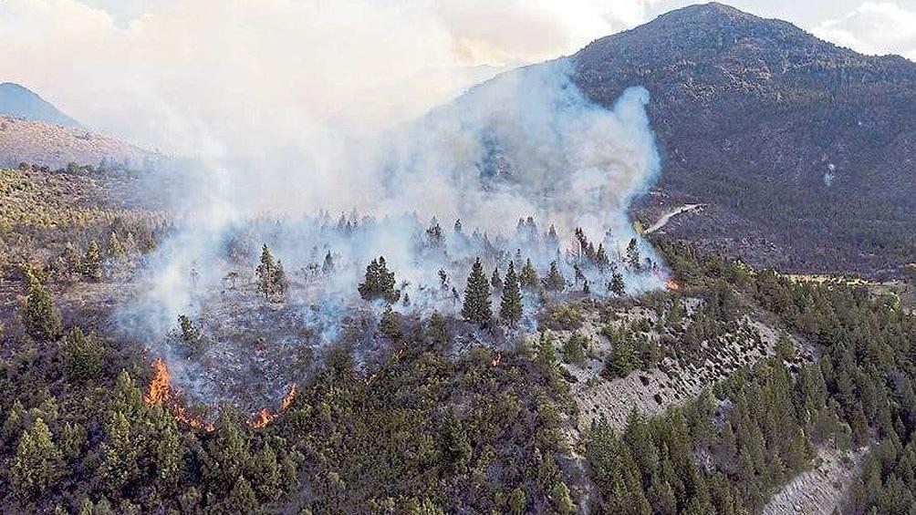 El incendio forestal comenzó pasado el mediodía del domingo en Cuesta del Ternero.