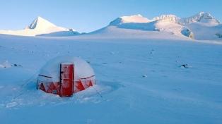 Antártida: una ola de calor generó cambios drásticos en microorganismos que producen la mitad del oxígeno del planeta
