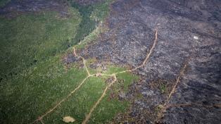 Según el viceministro de Ambiente, el fuego está contenido pero no controlado