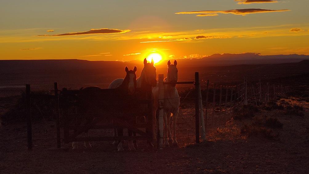 Una travesía en la que el ritmo lo marcan los caballos y su necesidad de alimento y descanso.