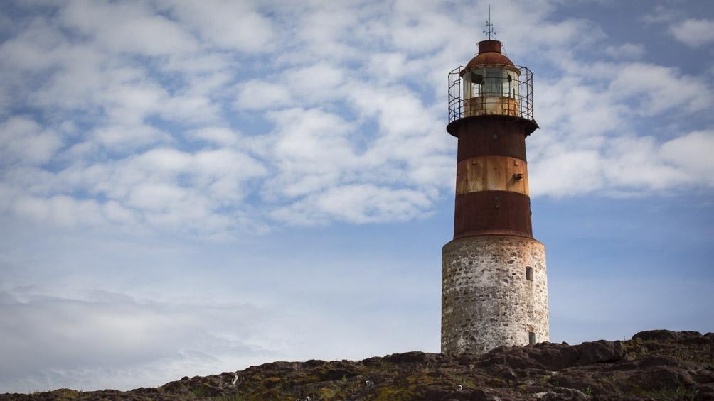 La fauna marina patagónica se destaca entre los atractivos de la Ruta Azul.