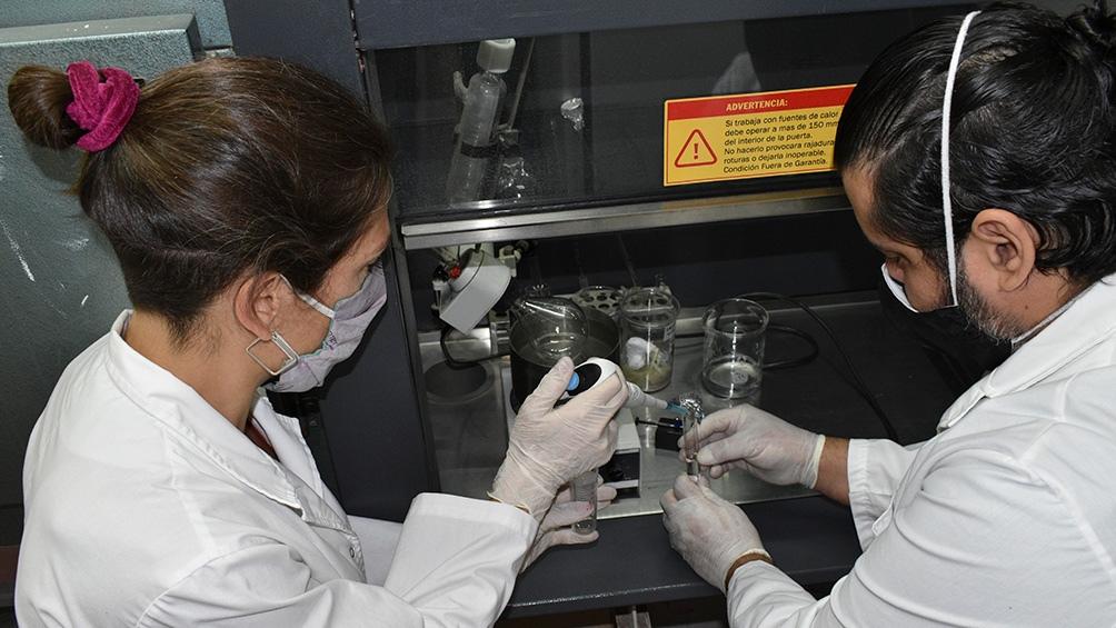 La vacuna desarrollada en INTA Bariloche generó anticuerpos en ratones y avanza hacia nuevos ensayos.
