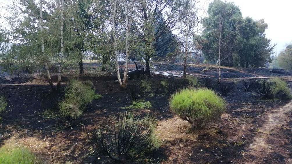 Lo que dejó el fuego en la localidad de El Hoyo, provincia de Chubut.