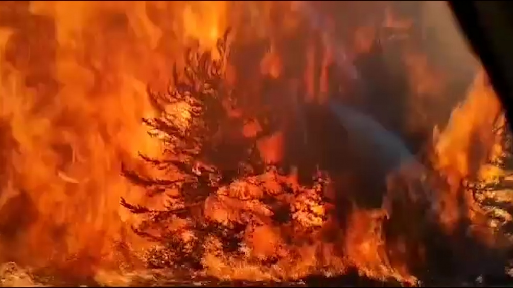 El Presidente viajará a Lago Puelo y luego sobrevolará la zona afectada por los incendios.