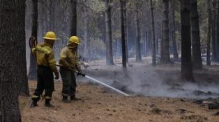 Incendios forestales: productores de la comarca sufrieron pérdidas millonarias