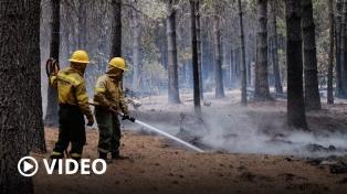 Ceden los incendios en la Patagonia mientras se impulsa la investigación judicial
