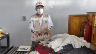 Descubrieron una valija con 185 tortugas en el aeropuerto de las Islas Galápagos