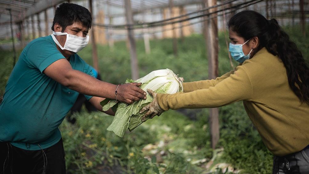 La UTT enarbola la bandera de la soberanía alimentaria.