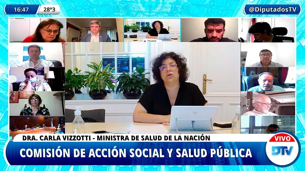Vizzotti dialogó por videoconferencia con legisladores de la Comisión de Salud de Diputados.