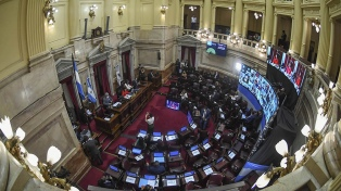 Elecciones: 19 de los 24 senadores que terminan su mandato no buscarán la reelección