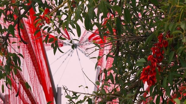 Hecha con 15 km de tanza roja, una instalación recrea la flor de ceibo